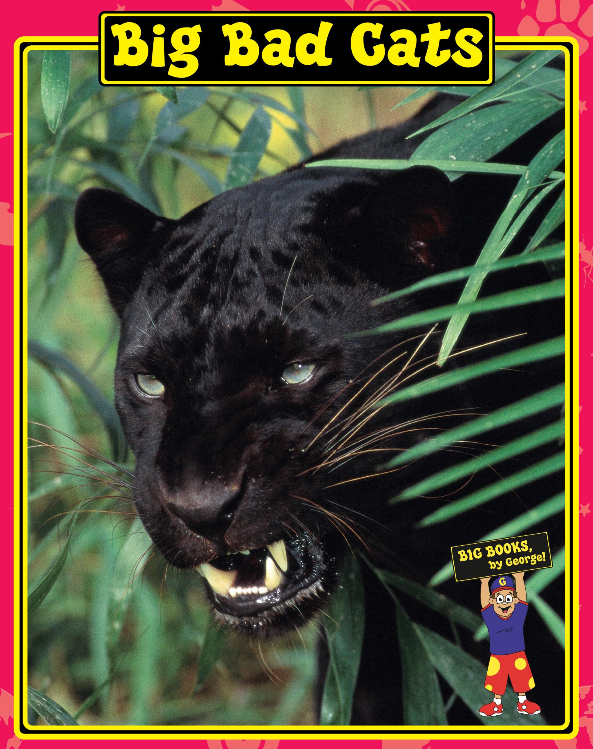 Big Bad Cats