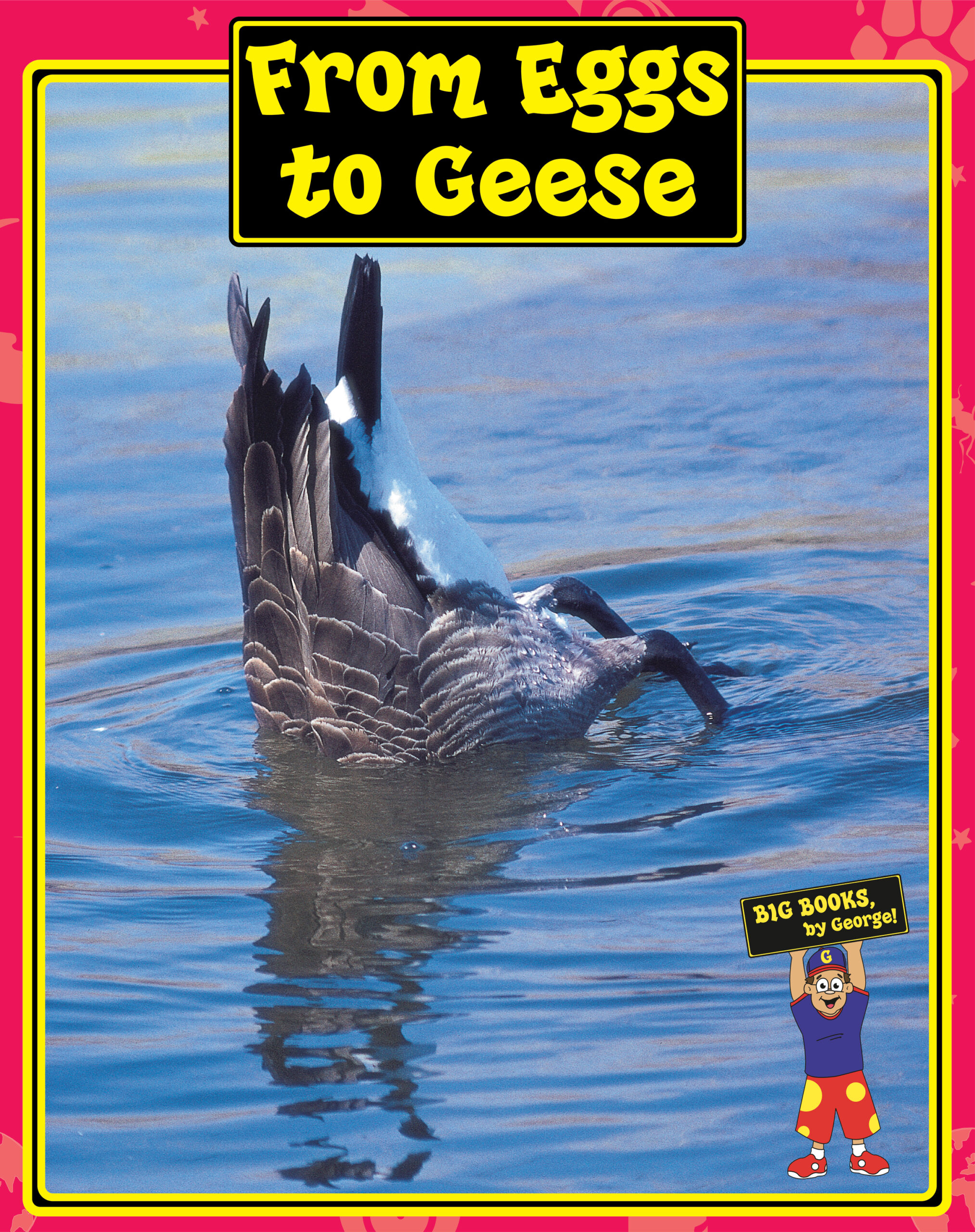 From Eggs to Geese