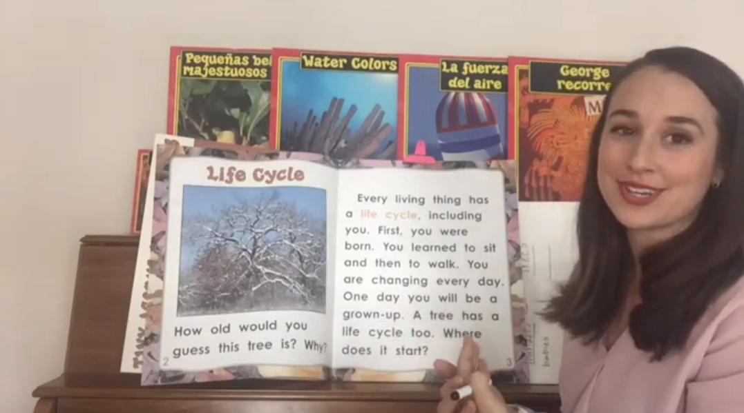 woman teaching using
